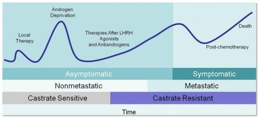 Verlauf einer Prostatakrebserkrankung