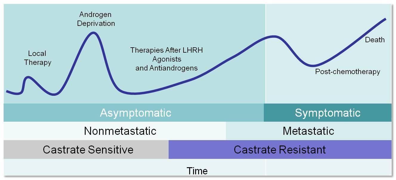 prostatitis heilungserfolge und weiterer verlauf
