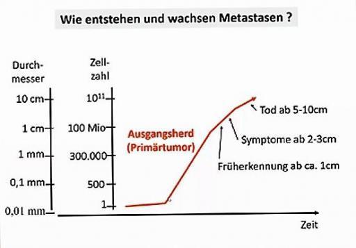 Prostatakrebs und Metastasen Entstehung, Entwicklung, Wachstum, Endstadium, Tod