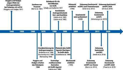 Entwicklung der Antiandrogene Therapie