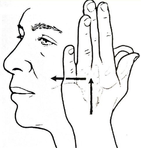Xerostomie Mundtrockenheit Parotis Massage